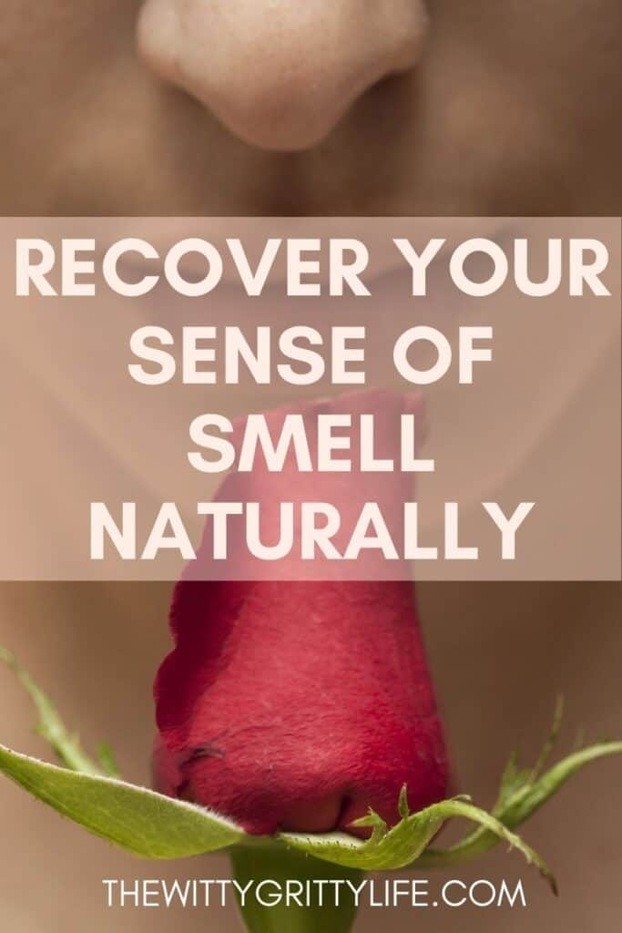 pinterest image recover your sense of smell and taste naturally