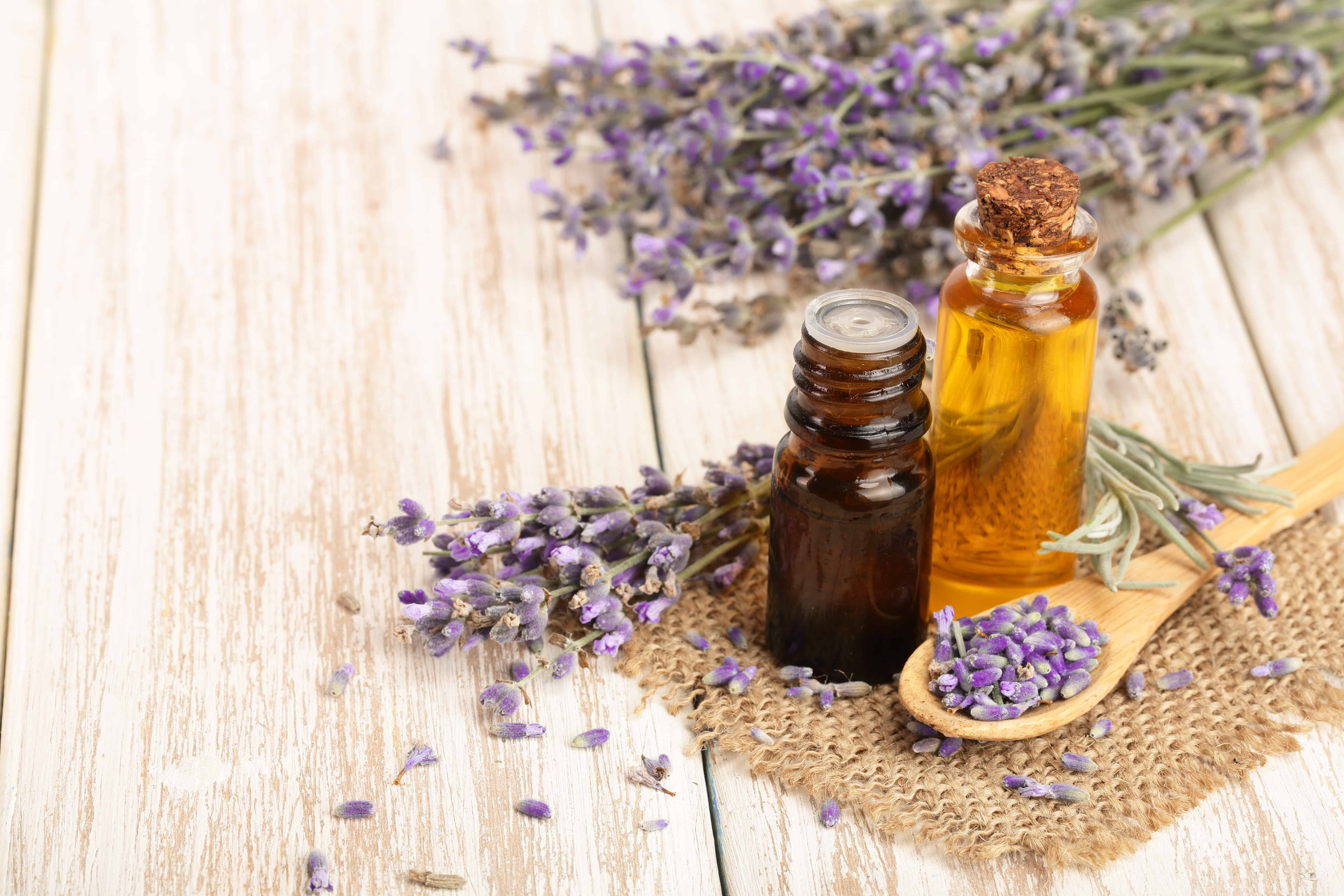 Image of essential oil bottle and lavender for How to buy essential oils