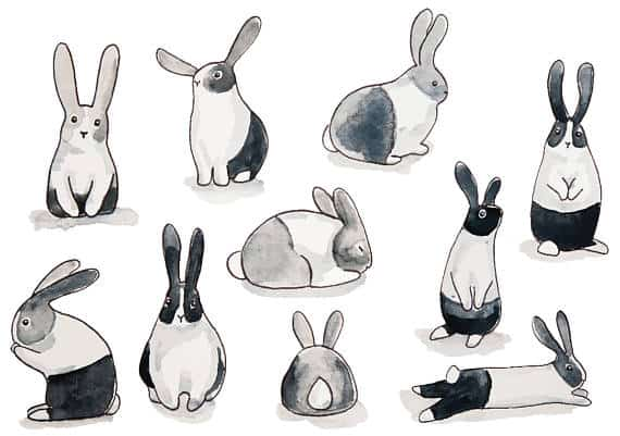 black and white bunny wall paper