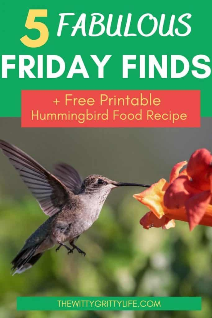 Pinterest image for 5 Fabulous Friday Finds showing image of humming bird