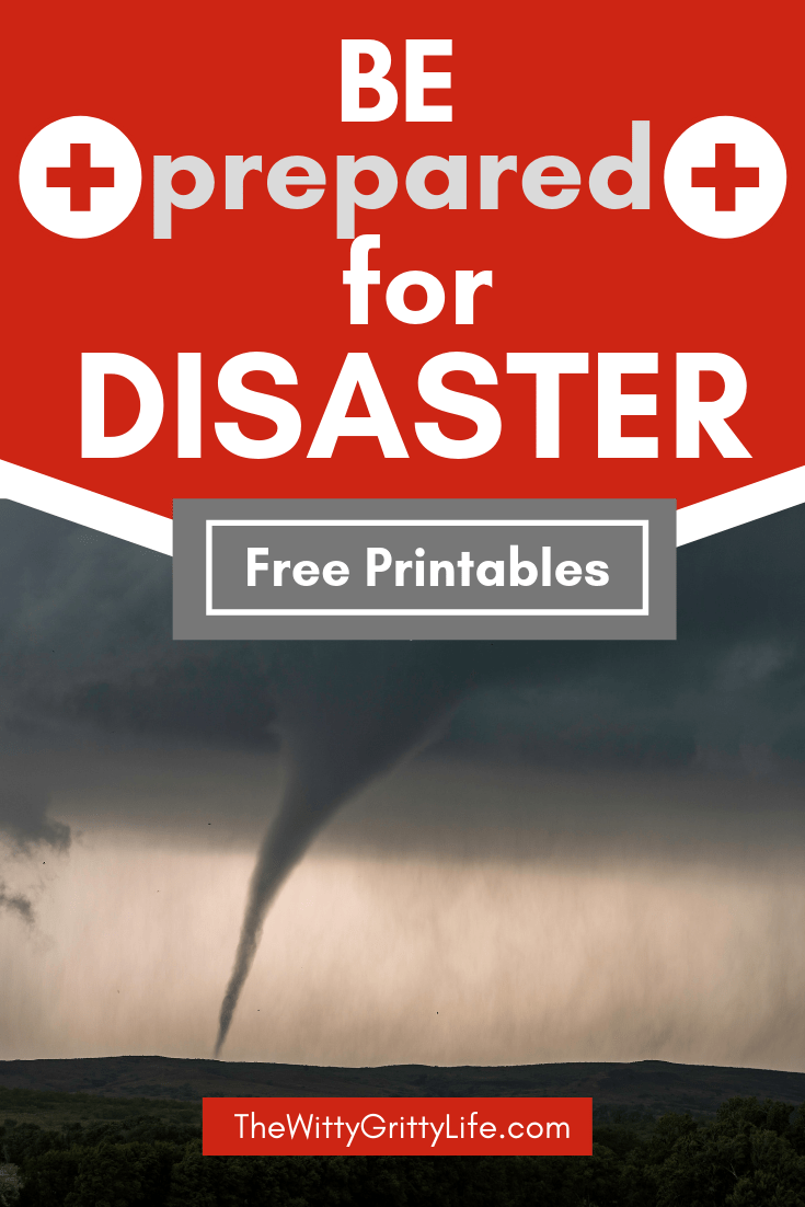 "pinterest graphic ""be prepared for disaster"""