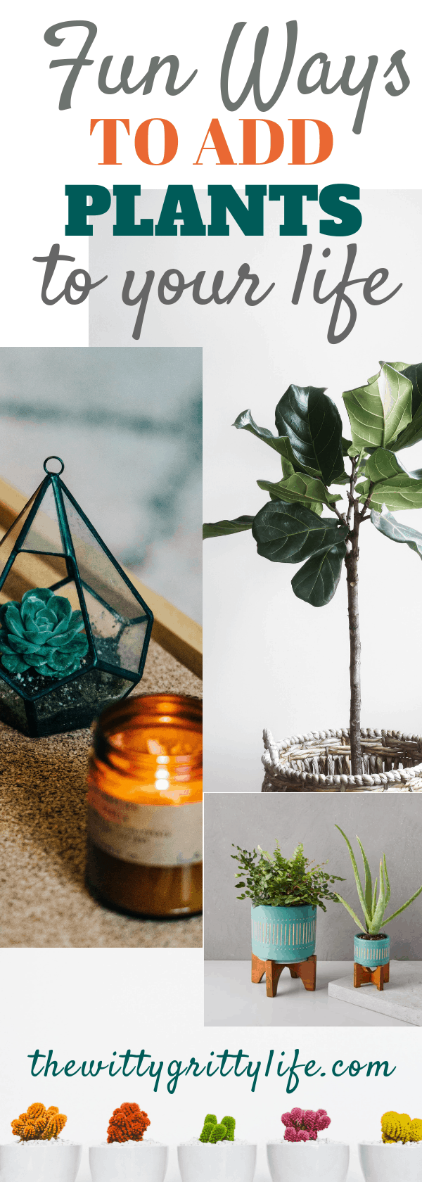 Plants are an important part of your indoor decor. You don't have to have a green thumb to incorporate them to create an indoor landscape. Have fun adding greenery and improve your overall quality of life at the same time!