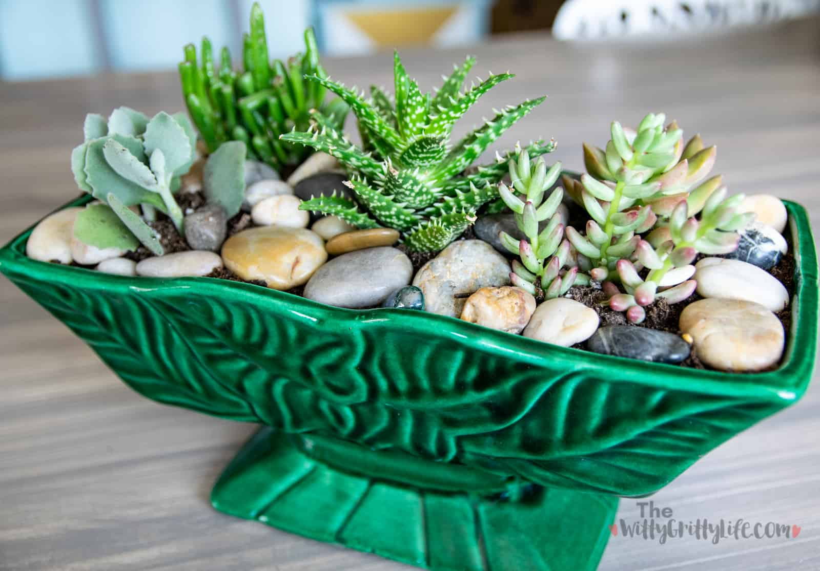 simple green ceramic succulent planter