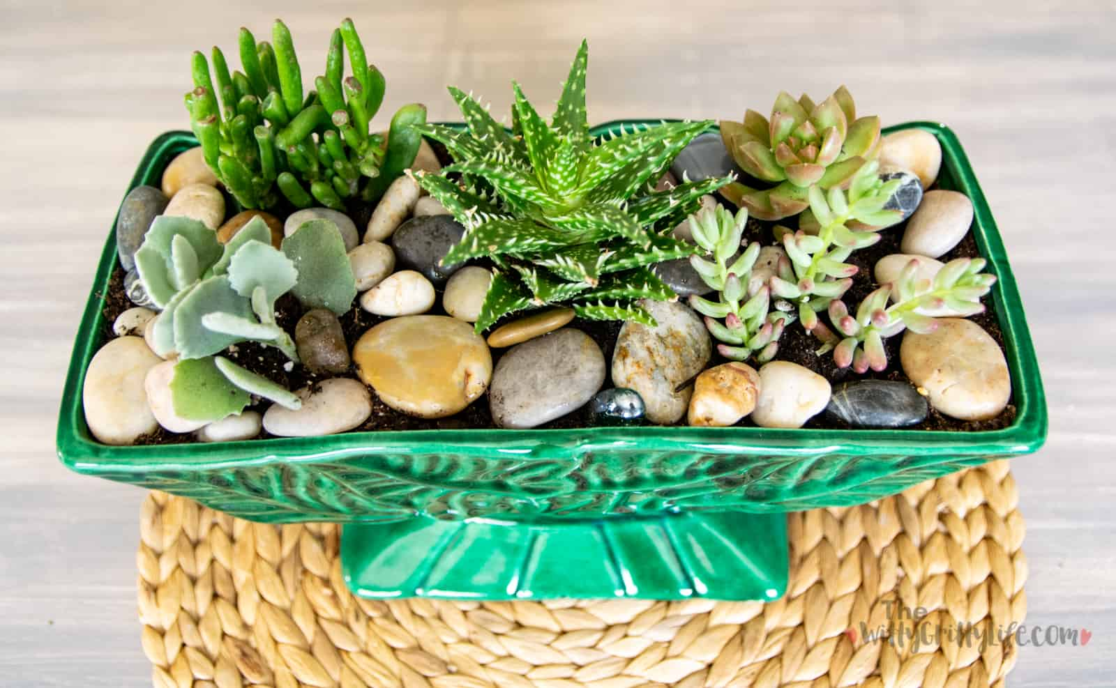 finished simple succulent planter