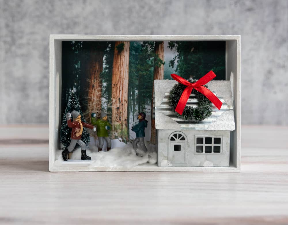 winter shadow box forest scene